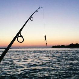 6.Fishing